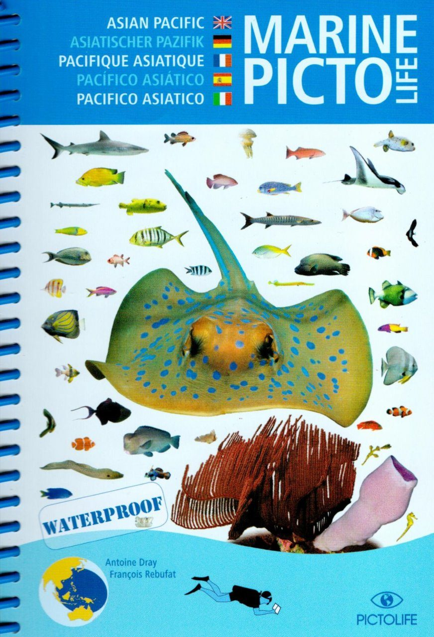 Marine Pictolife Western Tropical Pacific [multilingual]