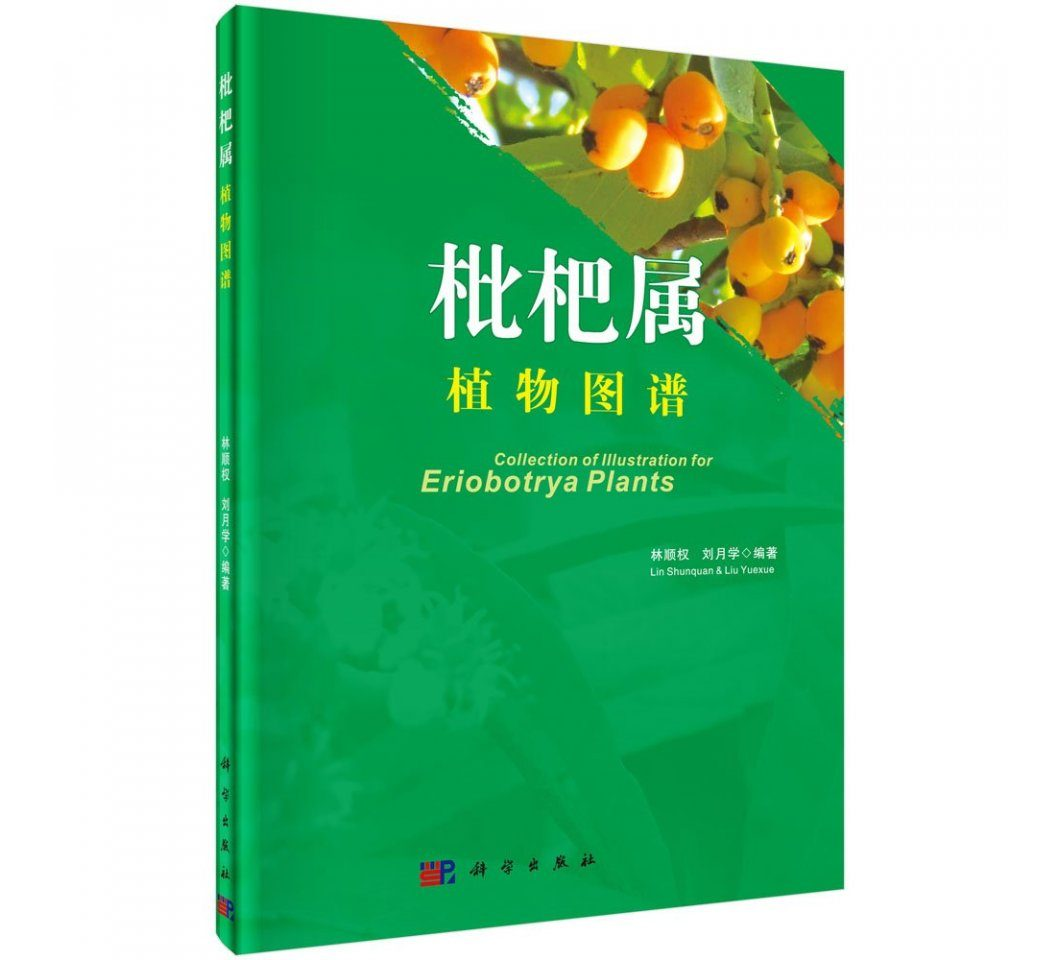 Collection of Illustrations for Eriobotrya Plants [English / Chinese]