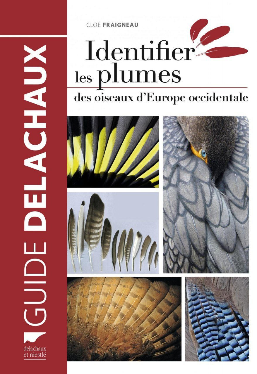 Identifier les Plumes des Oiseaux d'Europe Occidentale [Identifying the Feathers of Western European Birds]