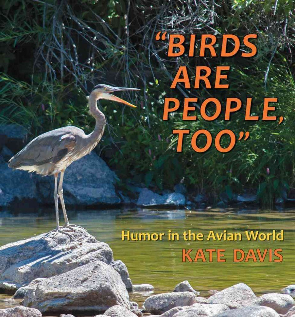 Birds Are People, Too