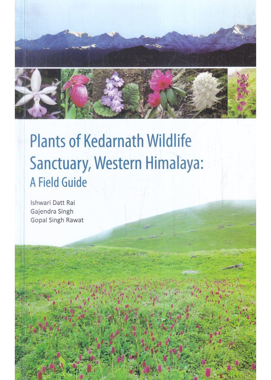 Plants of Kedarnath Wildlife Sanctuary, Western Himalaya