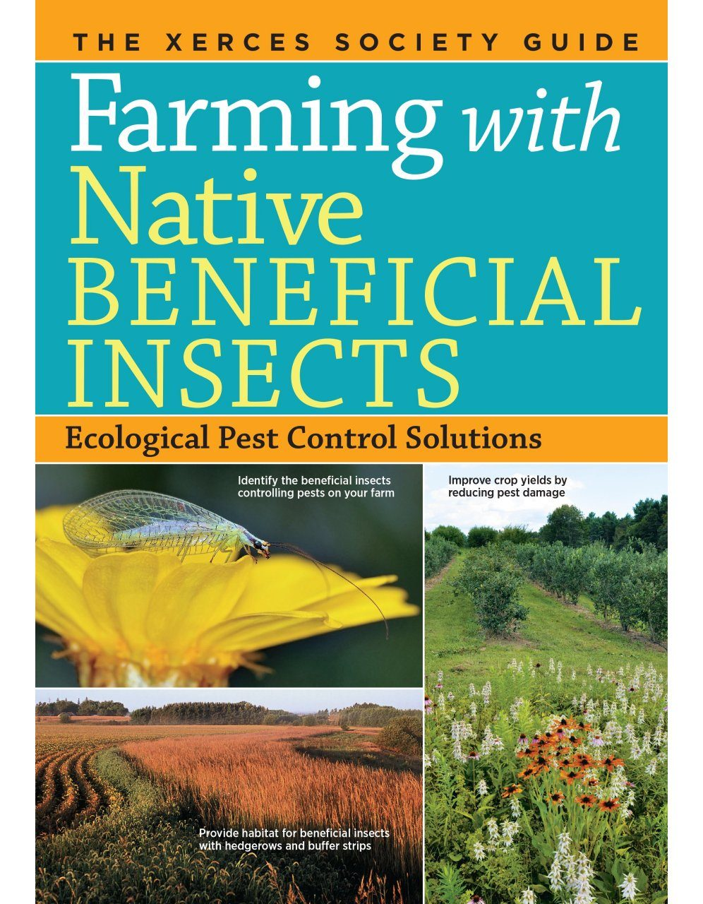 Ecological Pest Control Solutions