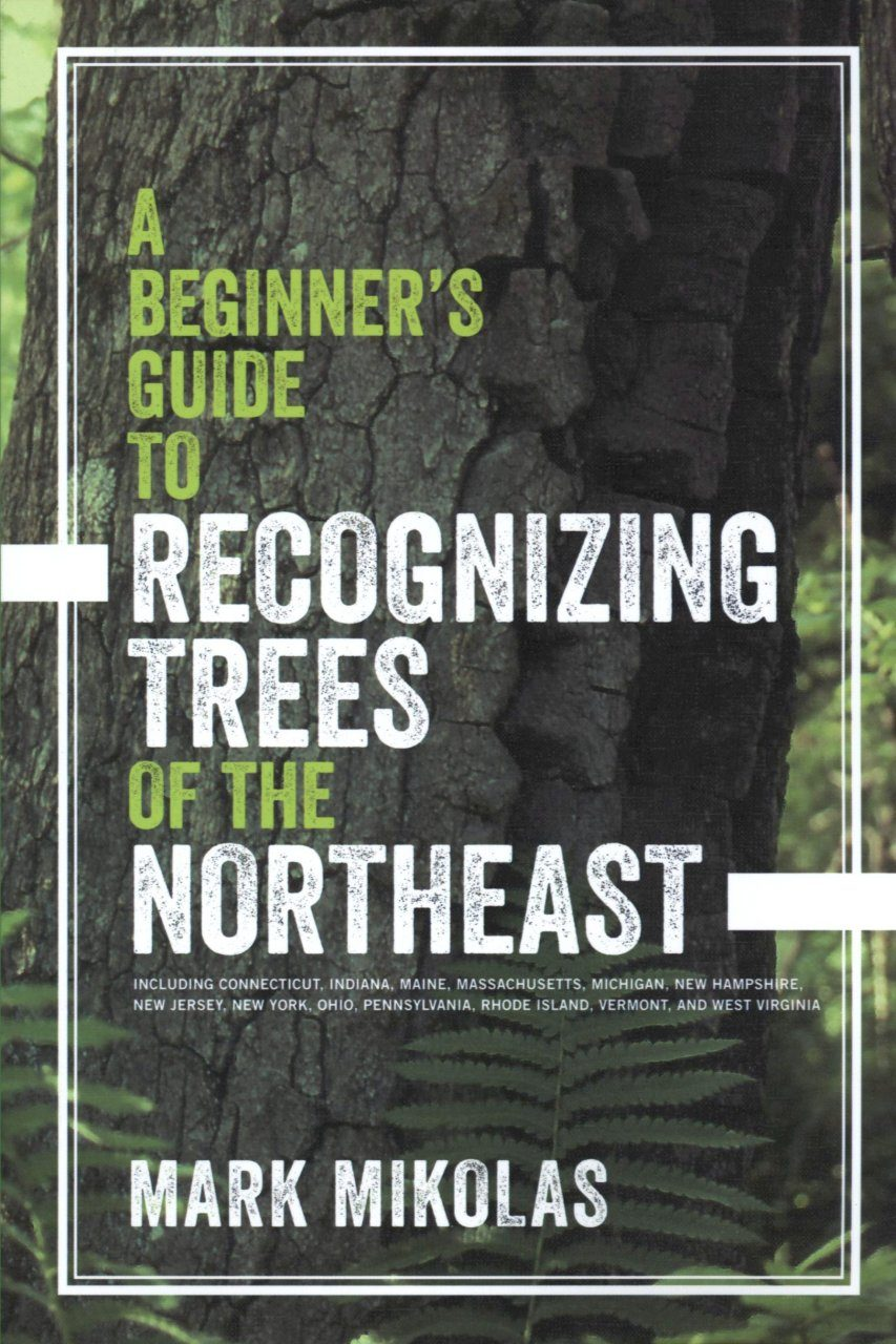 A Beginner's Guide to Recognizing Trees of the Northeast