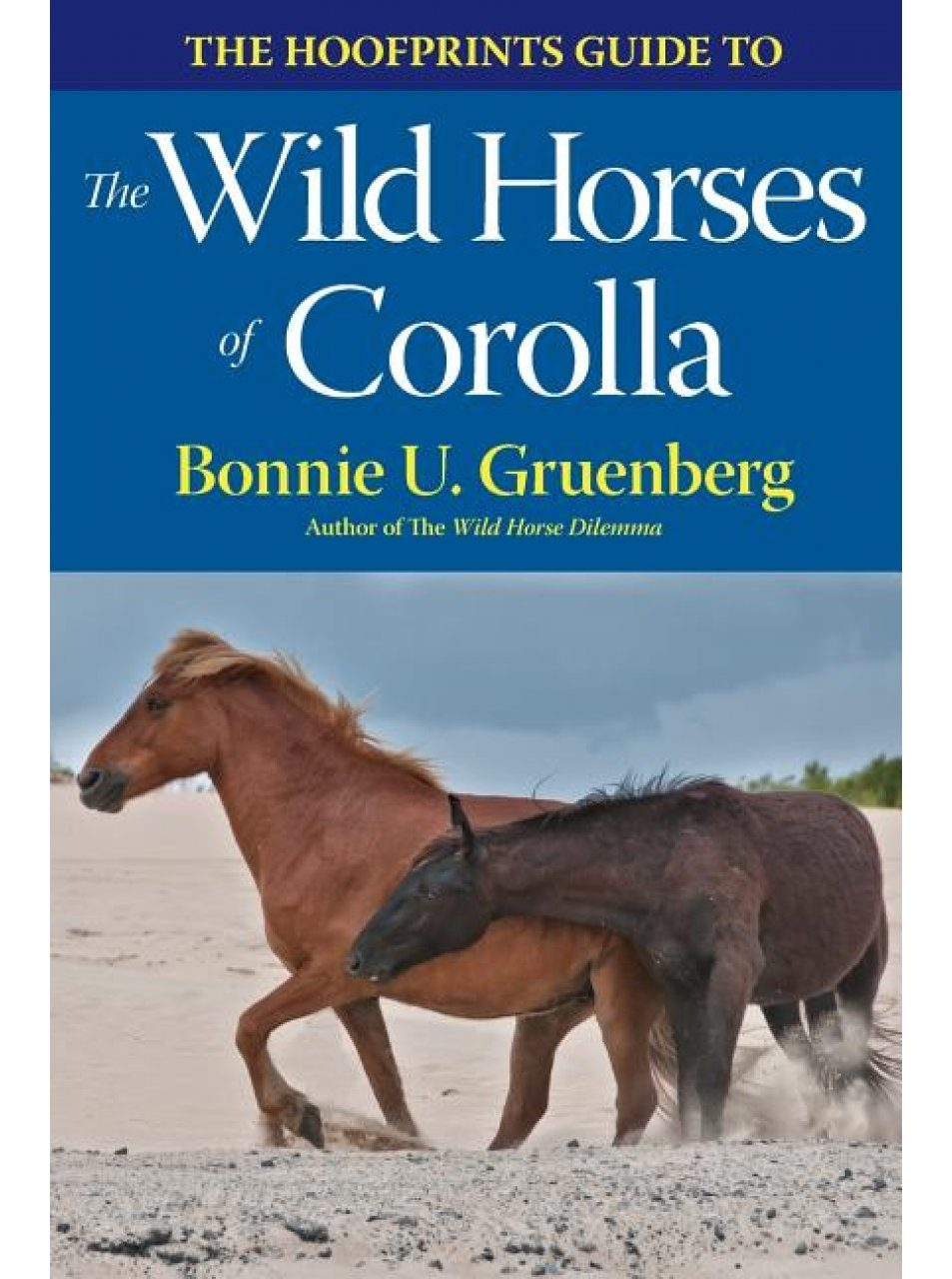 The Hoofprints Guide to the Wild Horses of Corolla, NC