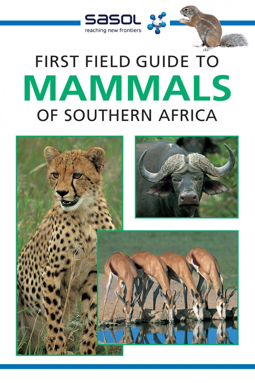 First Field Guide to Mammals of Southern Africa