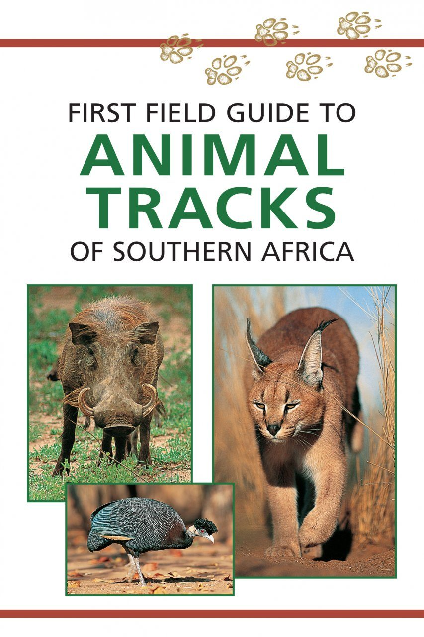 First Field Guide to Animal Tracks of Southern Africa