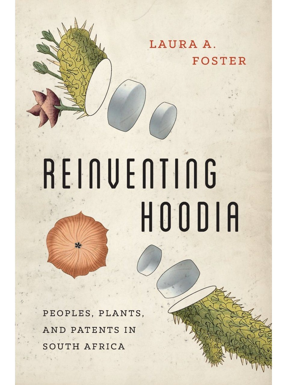 Reinventing Hoodia Peoples Plants And Patents In South Africa Nhbs Academic Professional Books