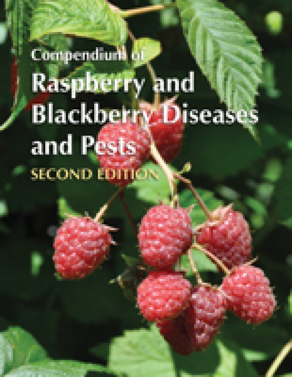 Compendium of Raspberry and Blackberry Diseases and Pests