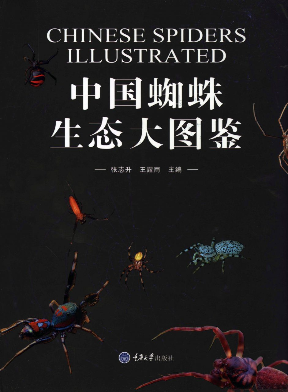Chinese Spiders Illustrated [Chinese]