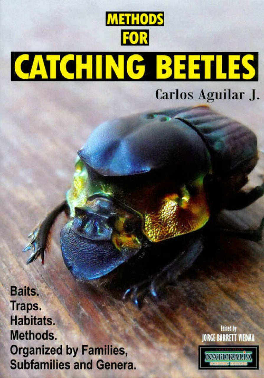 Methods for Catching Beetles