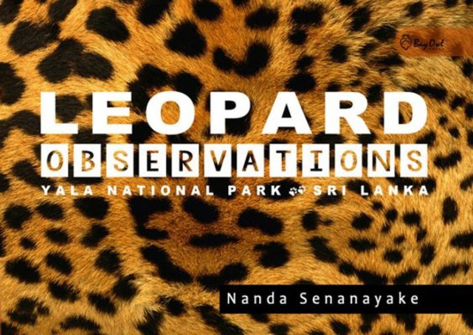 Leopard Observations