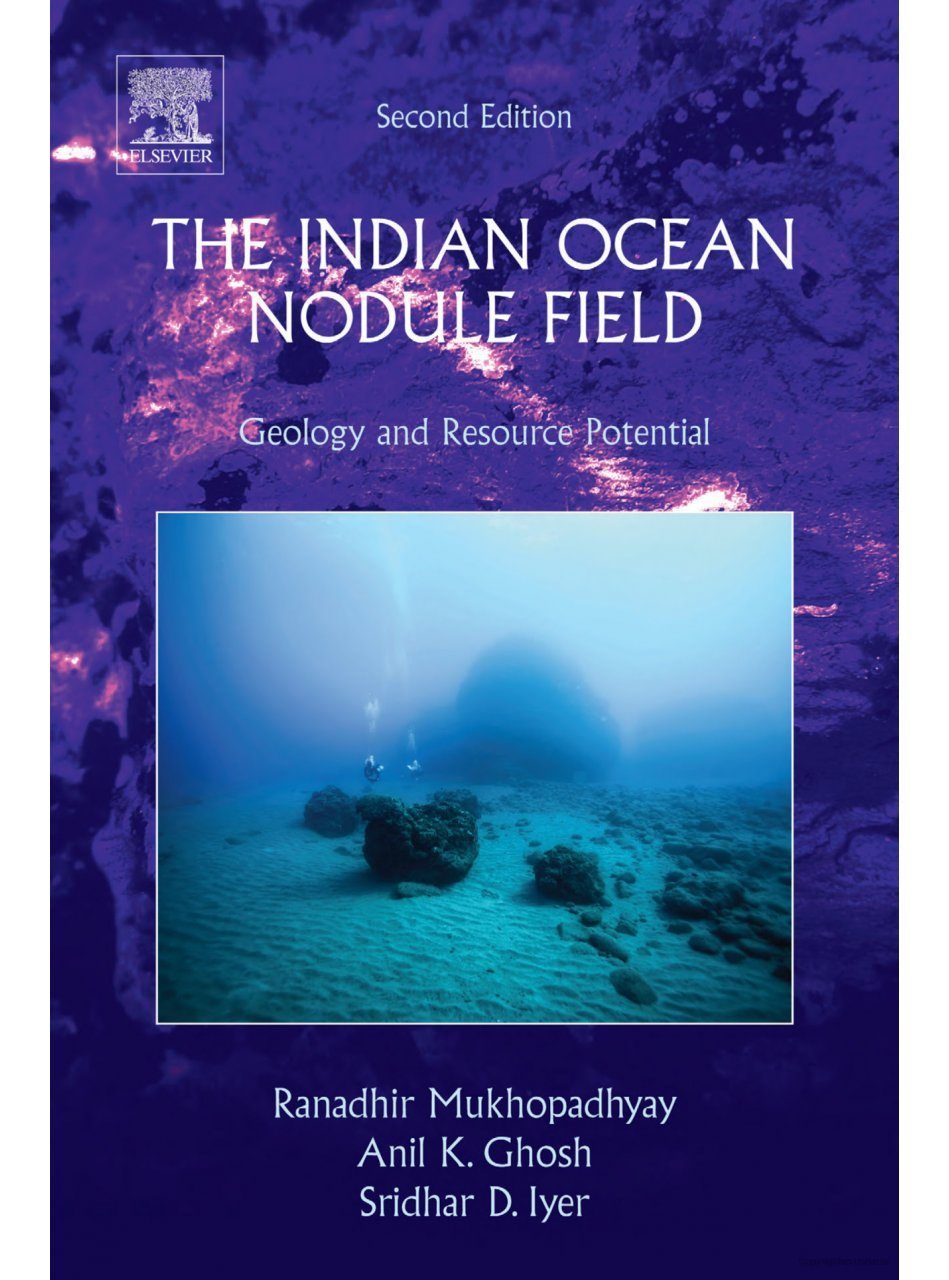 The Indian Ocean Nodule Field
