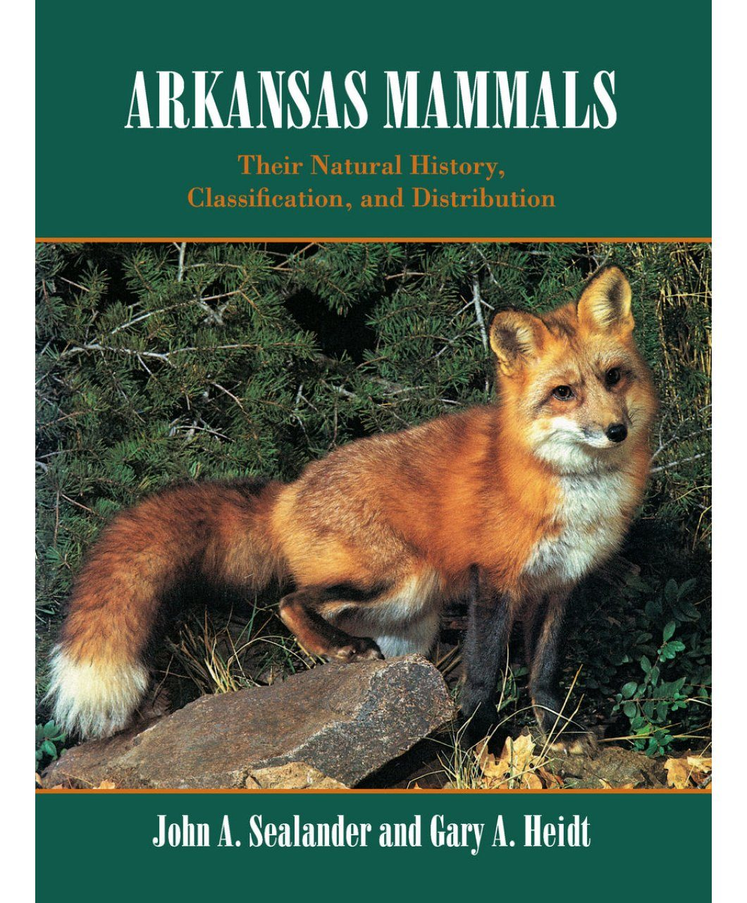 Arkansas Mammals