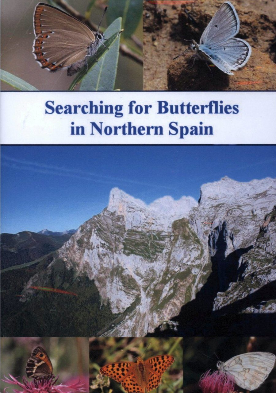 Searching for Butterflies in Northern Spain (Region 2)