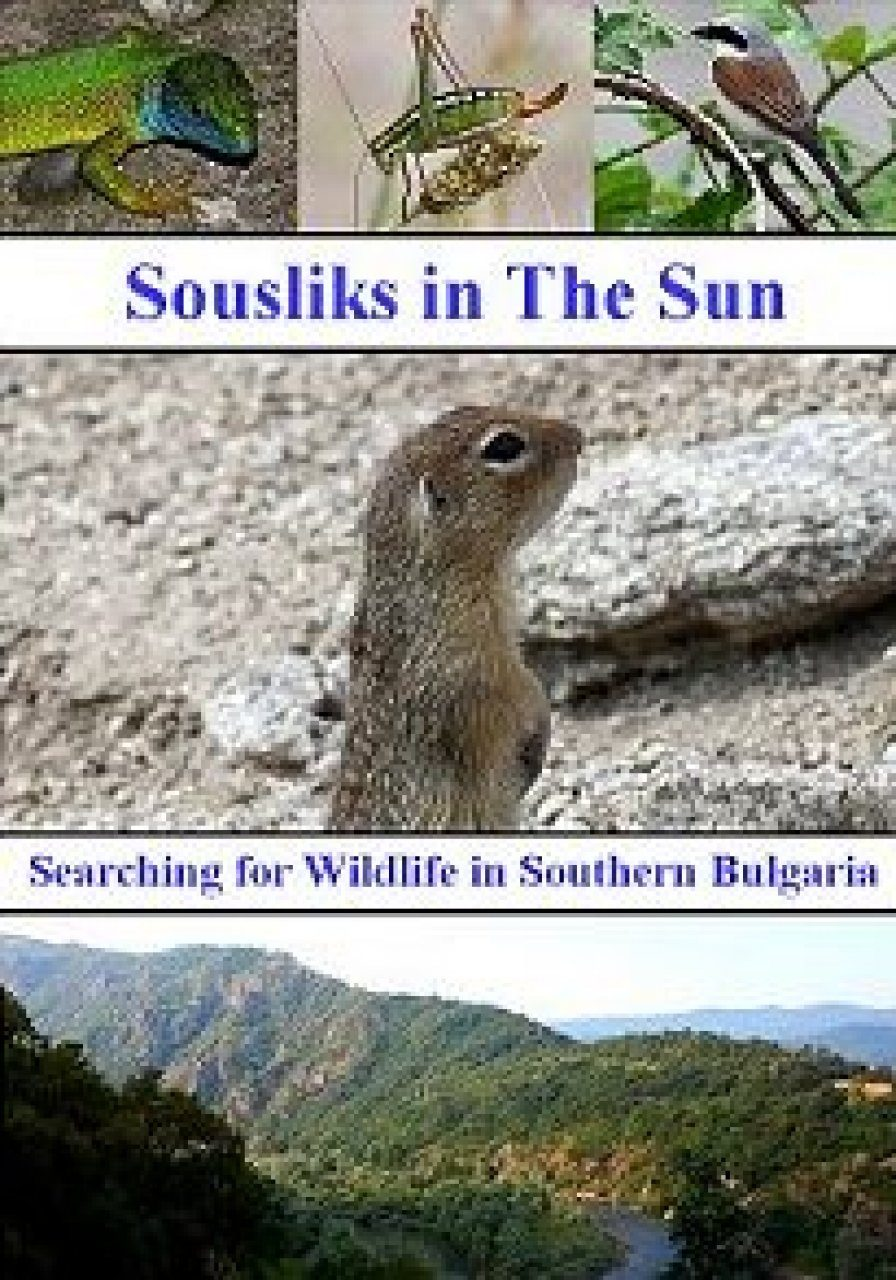 Sousliks in the Sun: Searching for Wildlife in Southern Bulgaria (Region 2)