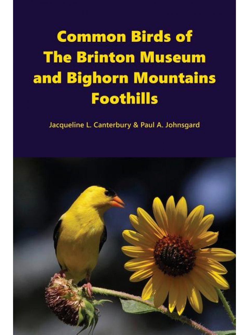 Common Birds of the Brinton Museum and Bighorn Mountains Foothills
