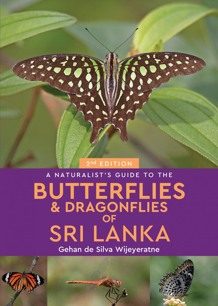 A Naturalist's Guide to the Butterflies & Dragonflies of Sri Lanka