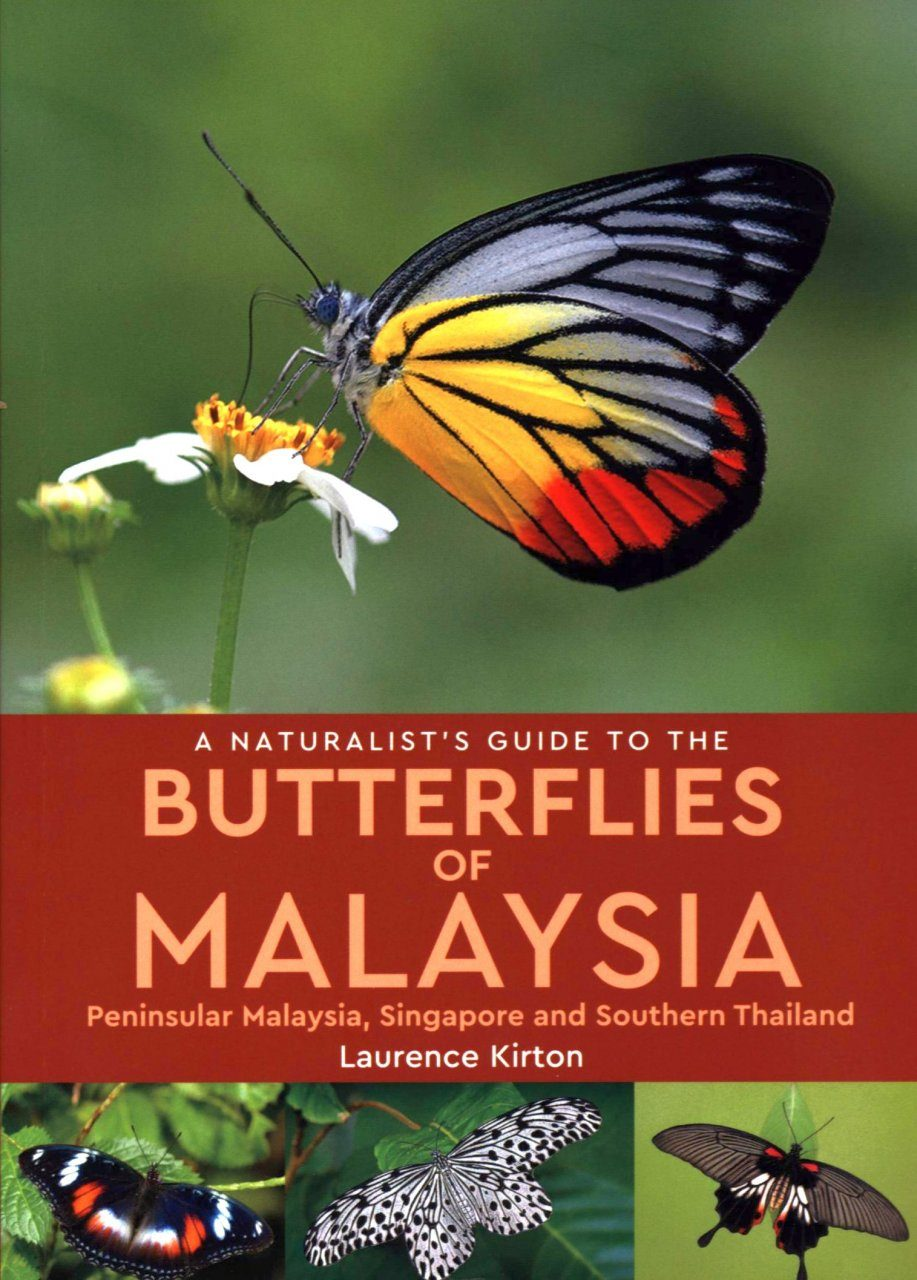 A Naturalist's Guide To Butterflies of Malaysia
