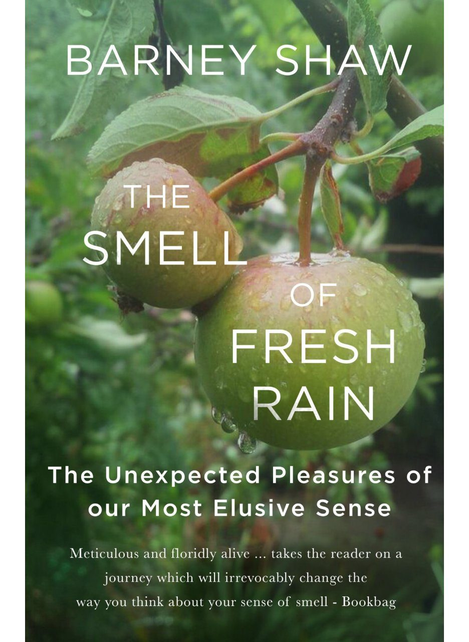 The Smell of Fresh Rain