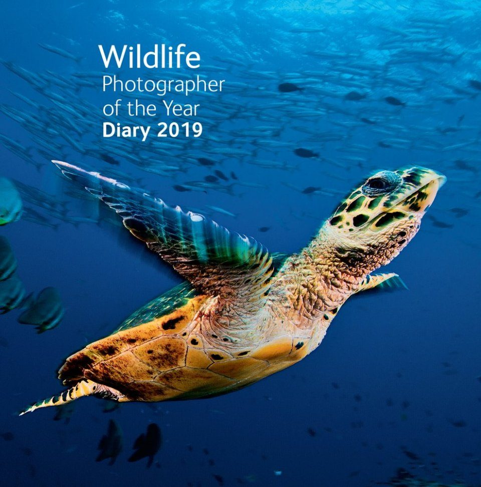 Wildlife Photographer of the Year Pocket Diary 2019
