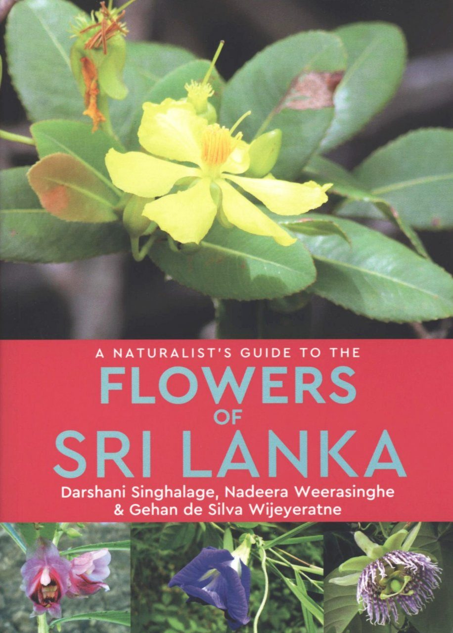 A Naturalist's Guide to the Flowers of Sri Lanka