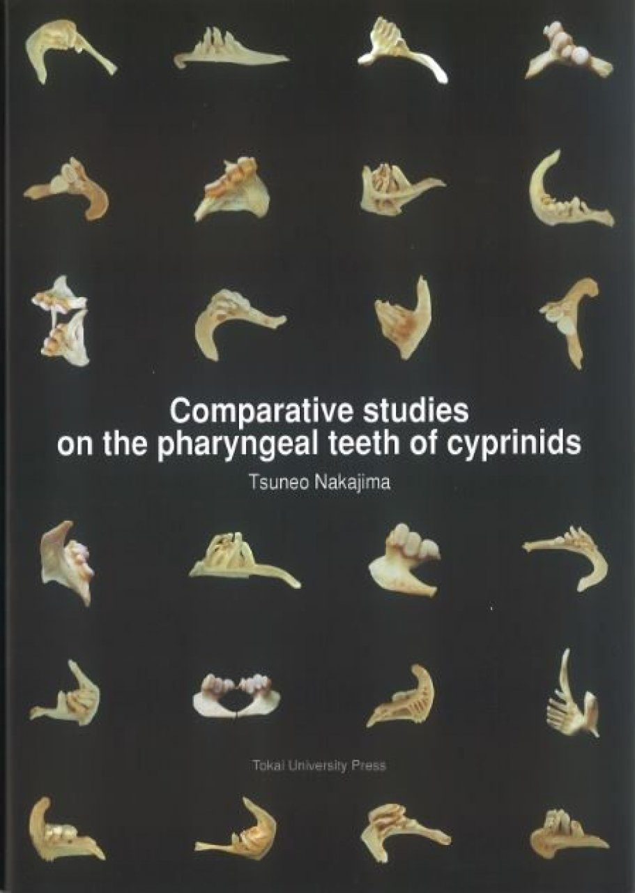 Comparative Studies on the Pharyngeal Teeth of Cyprinids
