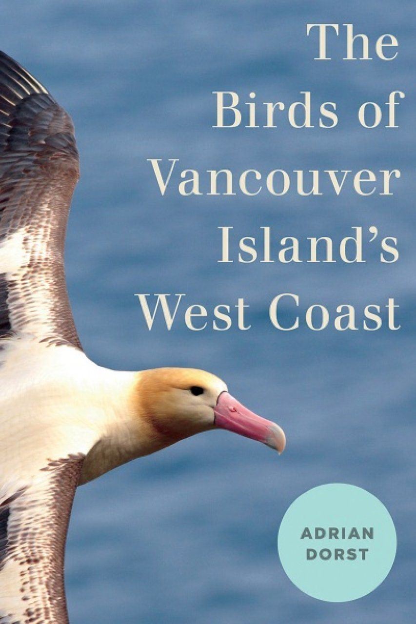 The Birds of Vancouver Island's West Coast