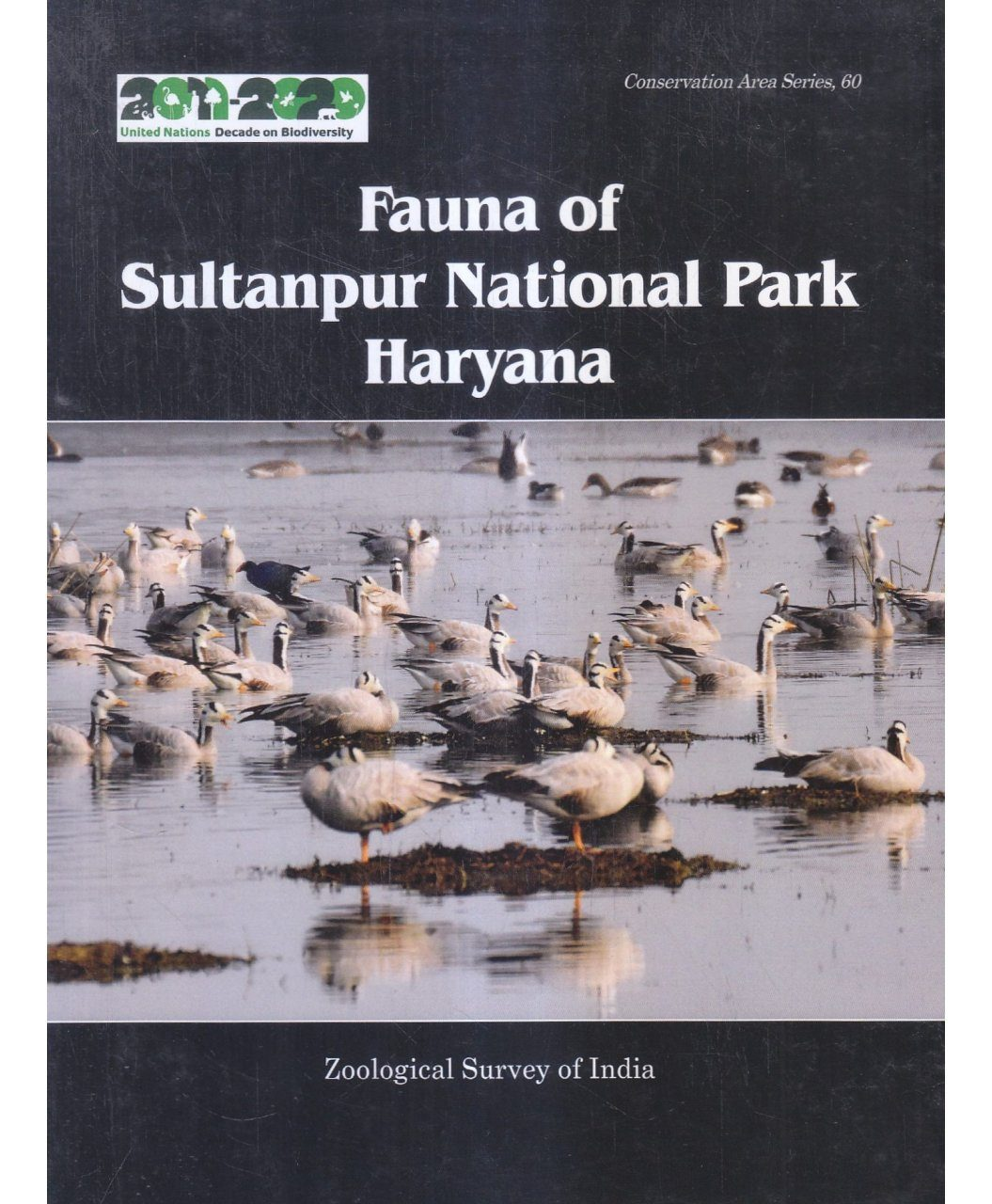 Fauna of Sultanpur National Park Haryana