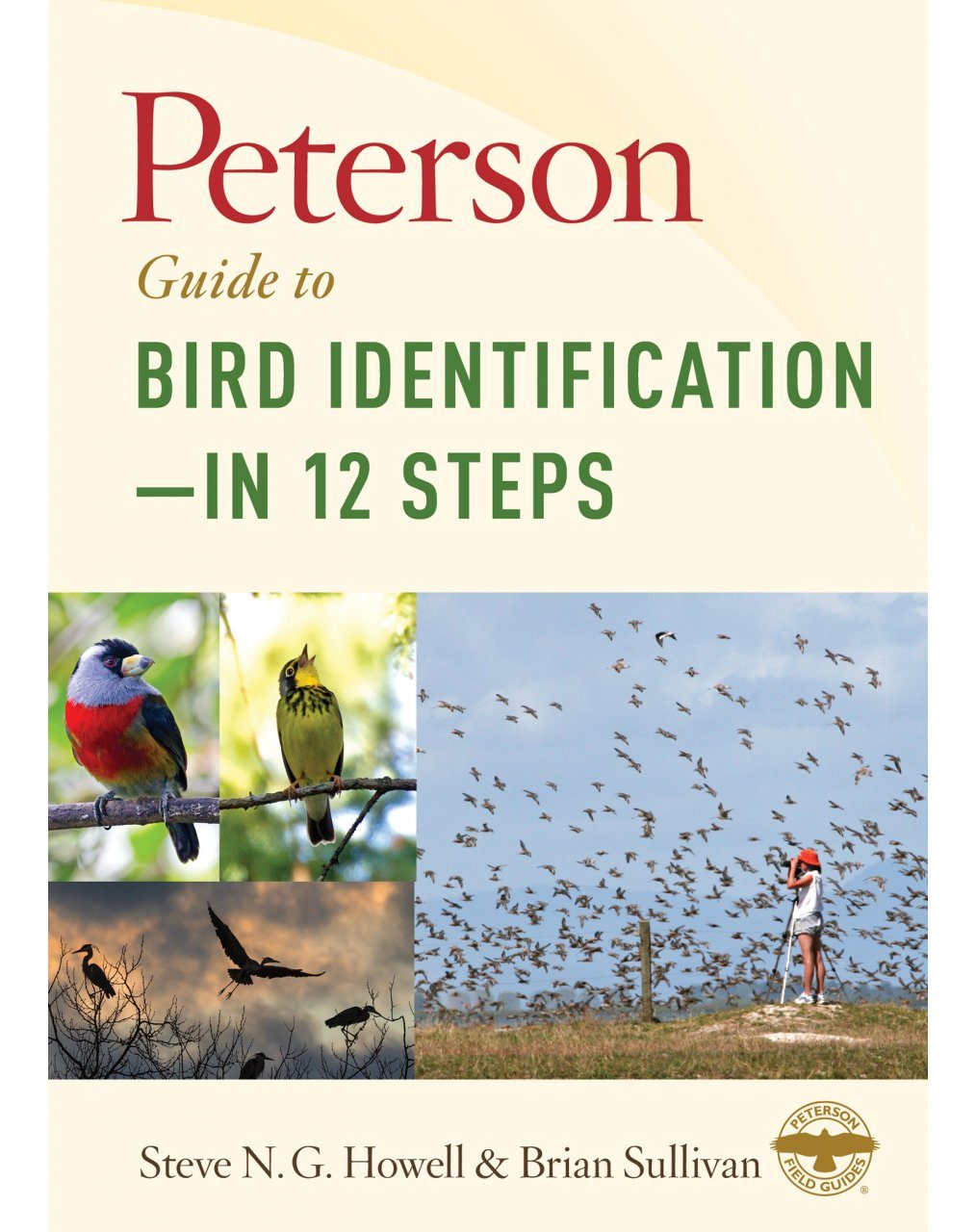 Peterson Guide to Bird Identification – in 12 Steps