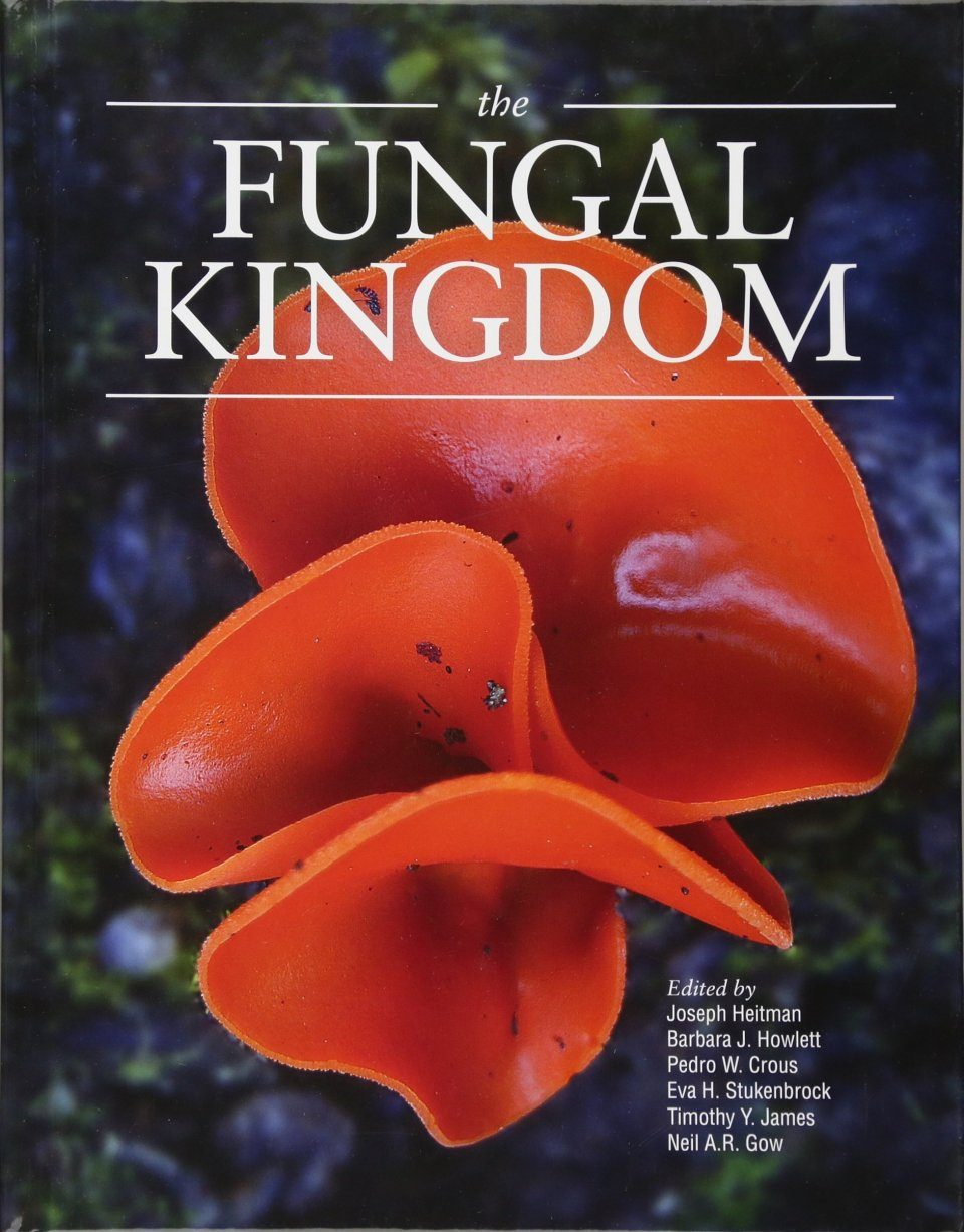 The Fungal Kingdom