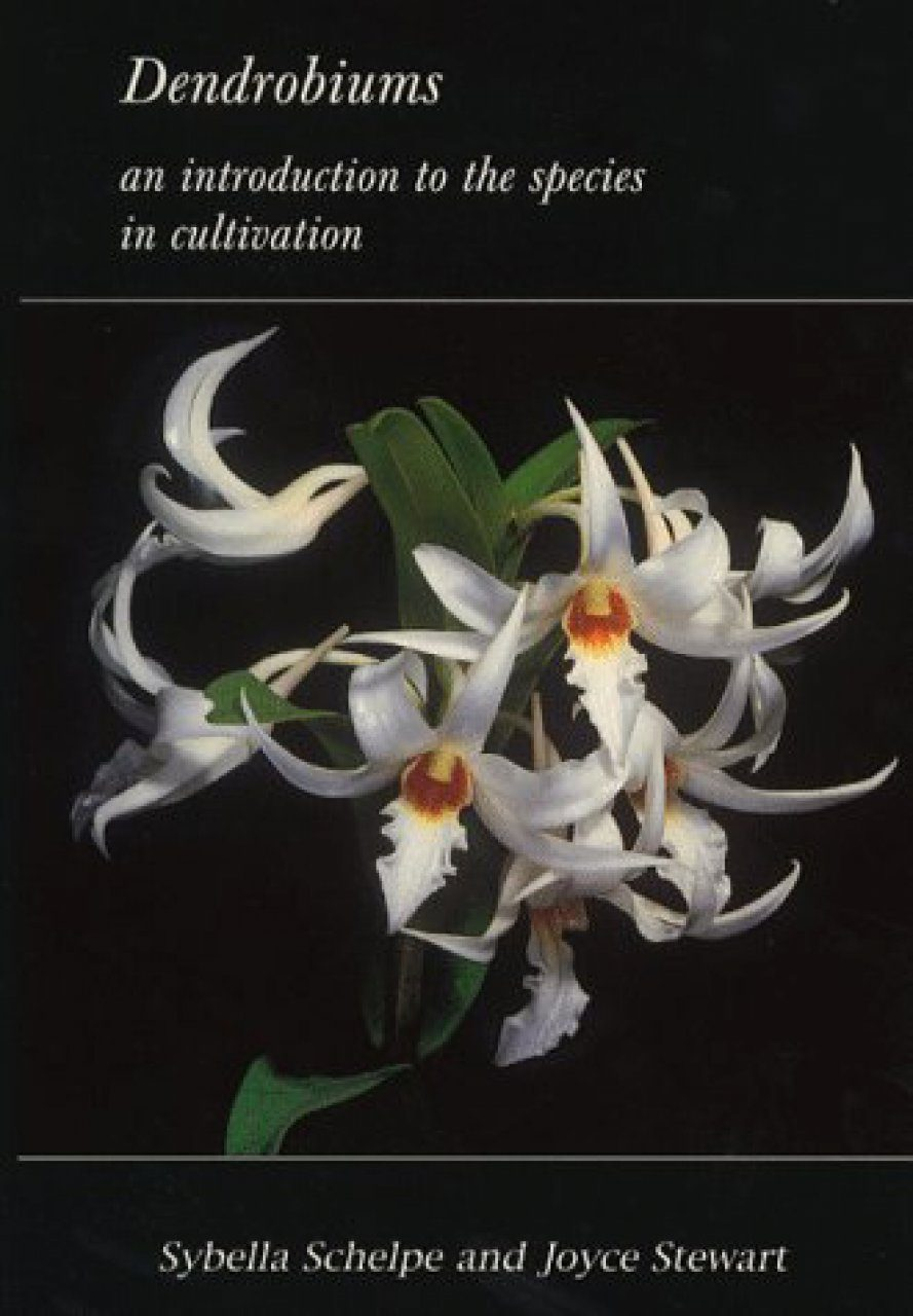 Dendrobiums: An Introduction to the Species in Cultivation