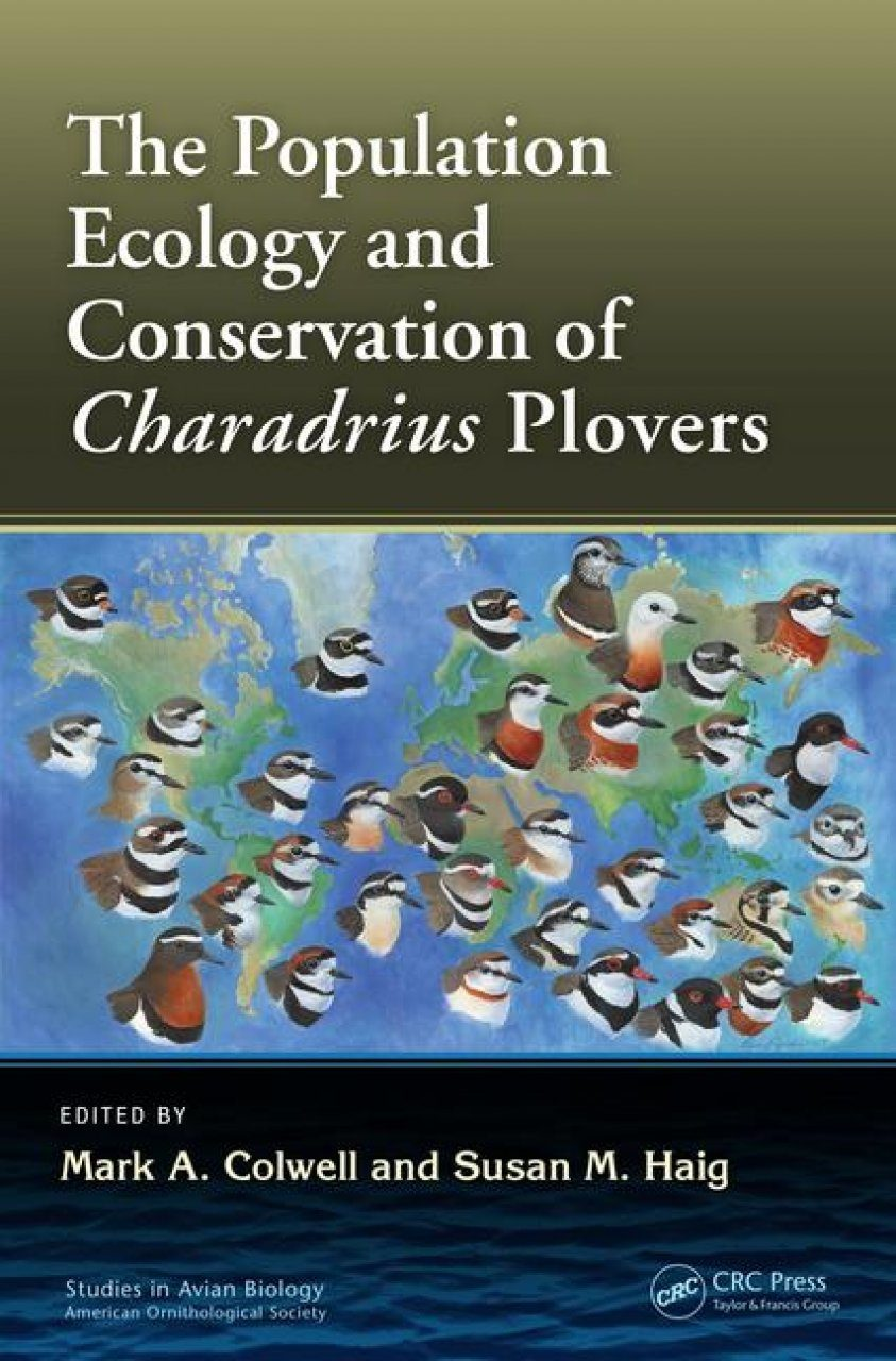 The Ecology and Conservation of Charadrius Plovers