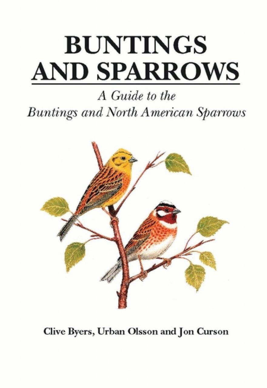 Buntings and Sparrows