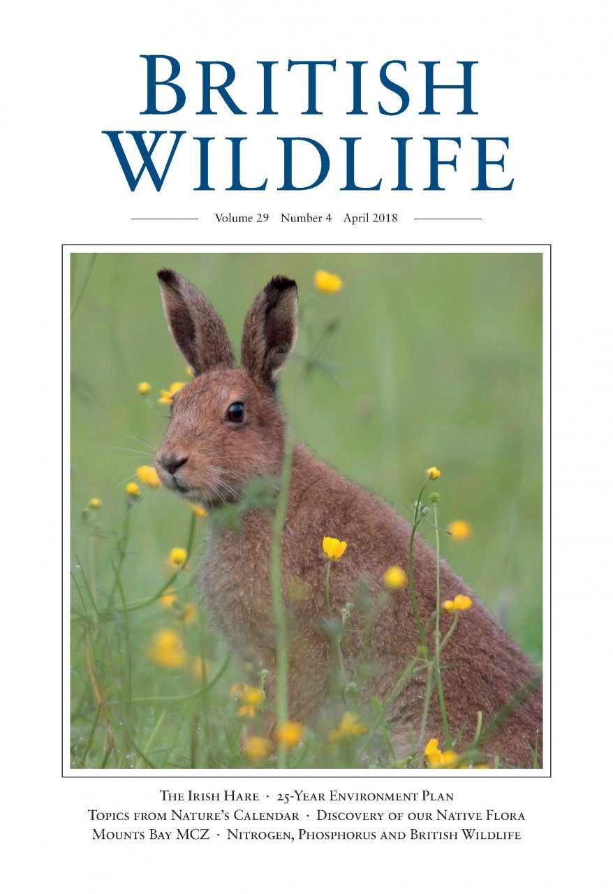 British Wildlife 29.4 April 2018