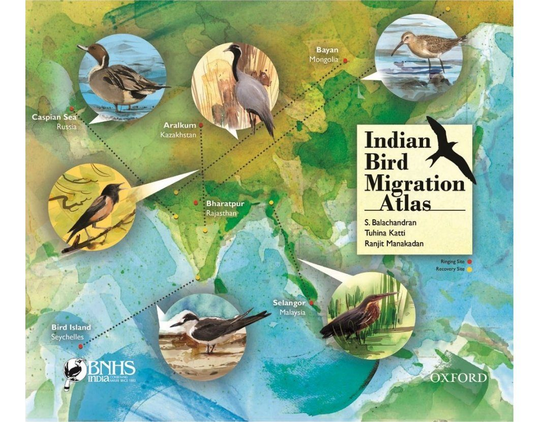 Indian Bird Migration Atlas