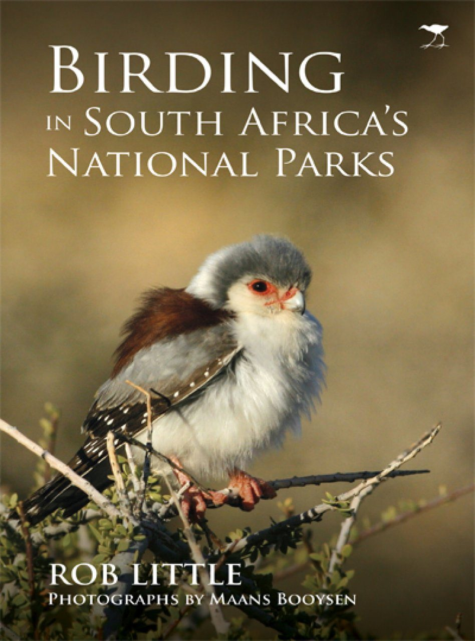 Birding in South Africa's National Parks