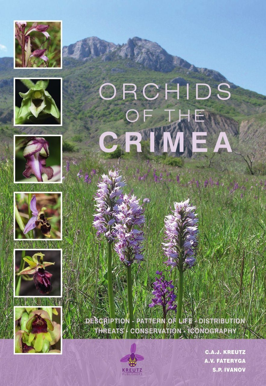 Orchids of the Crimea