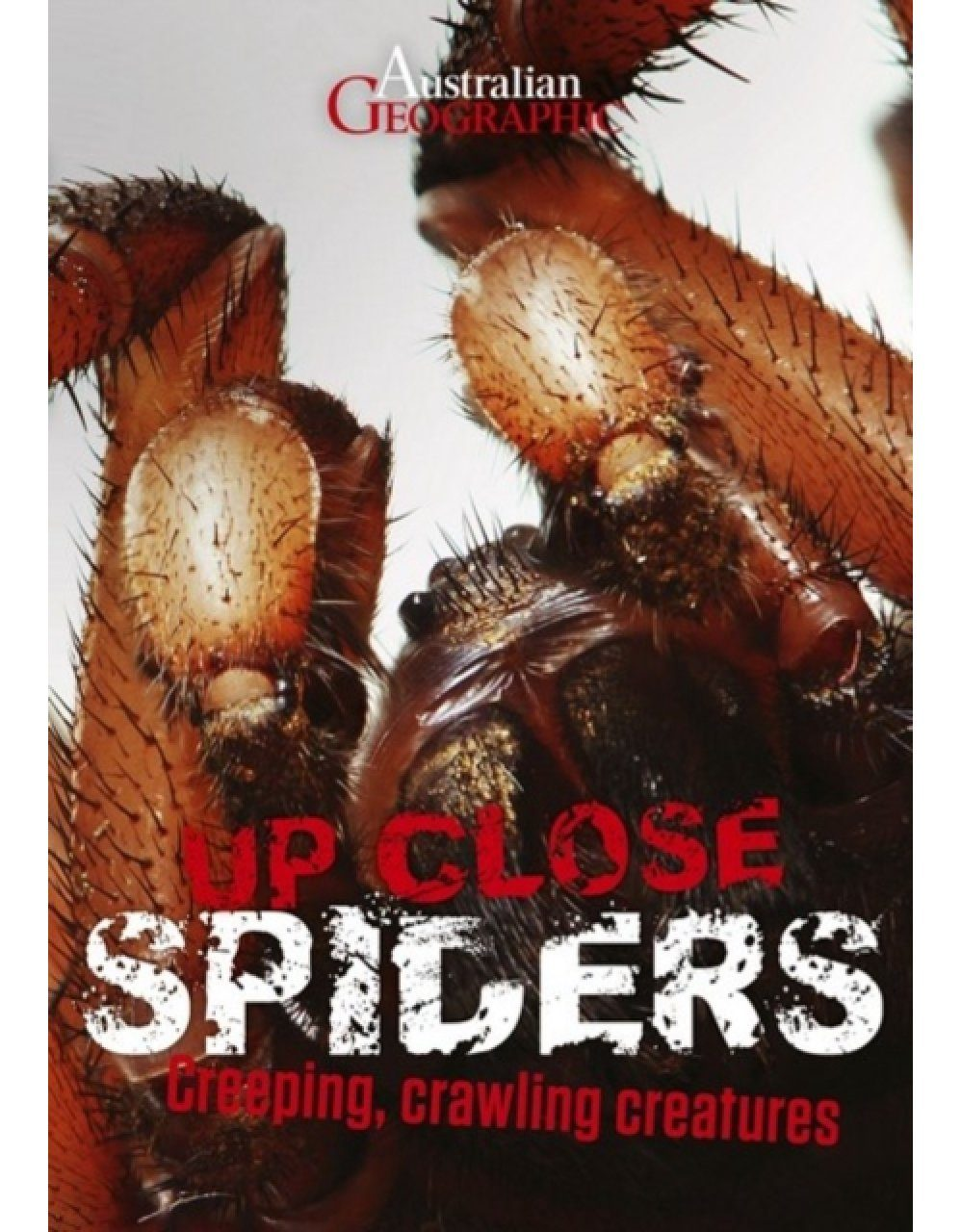 Australian Geographic Up Close: Spiders