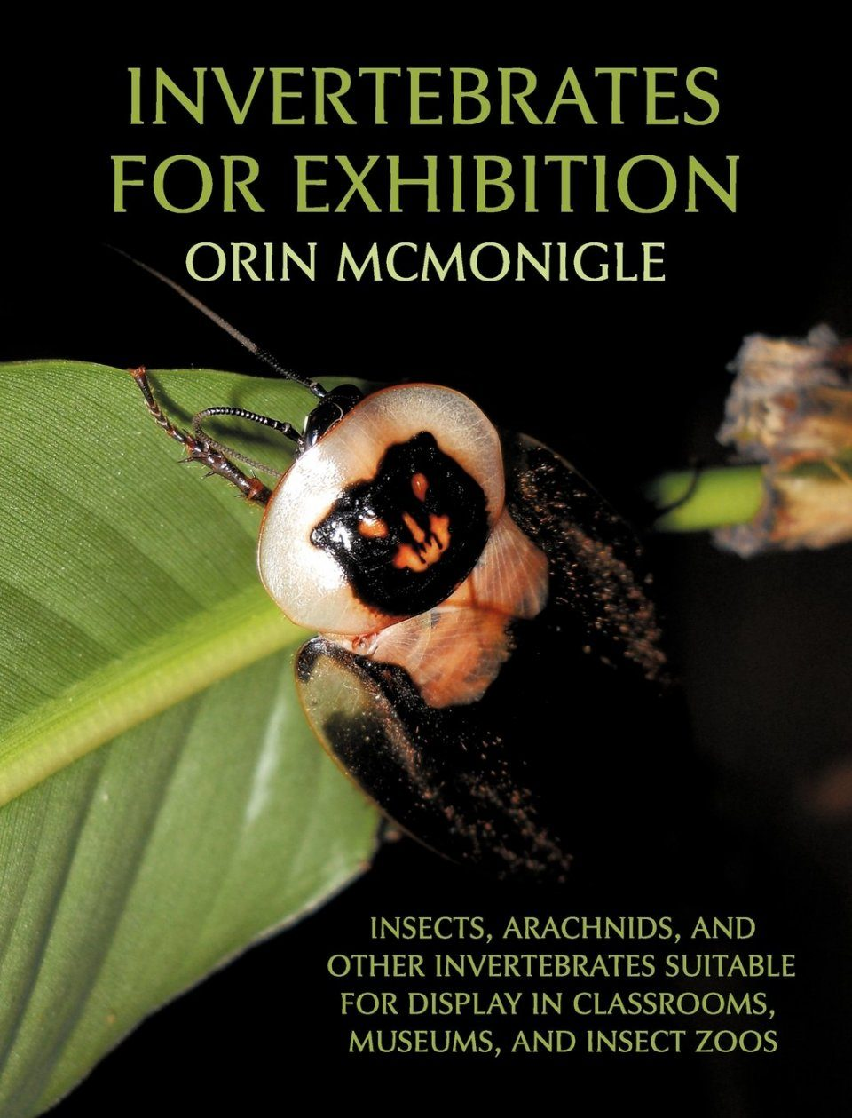 Invertebrates for Exhibition