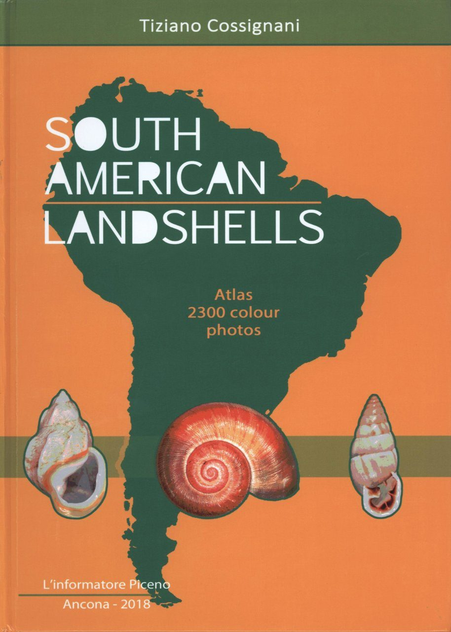 South American Landshells