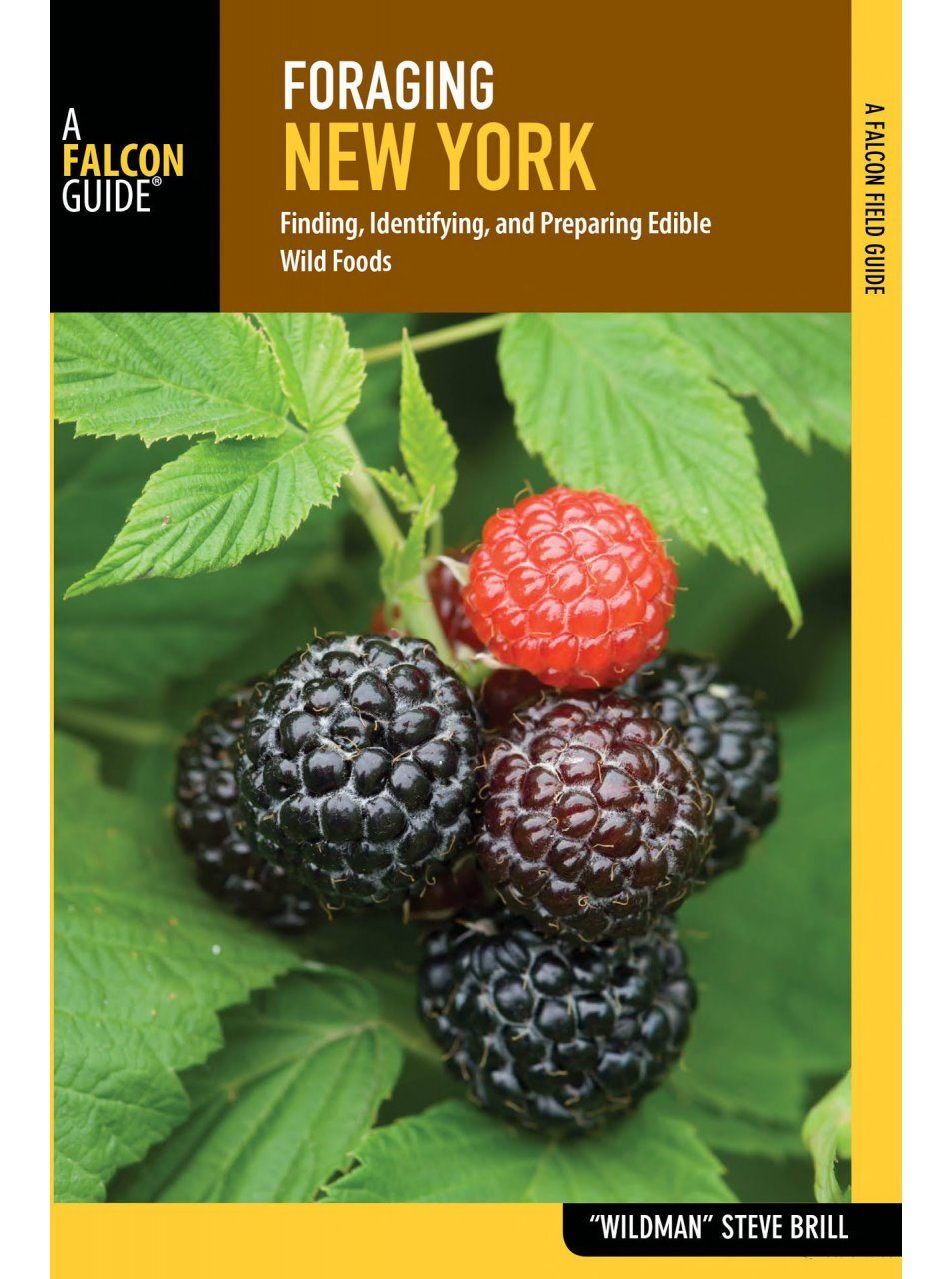 Foraging New York