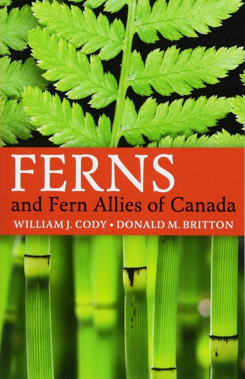 Ferns and Fern Allies of Canada