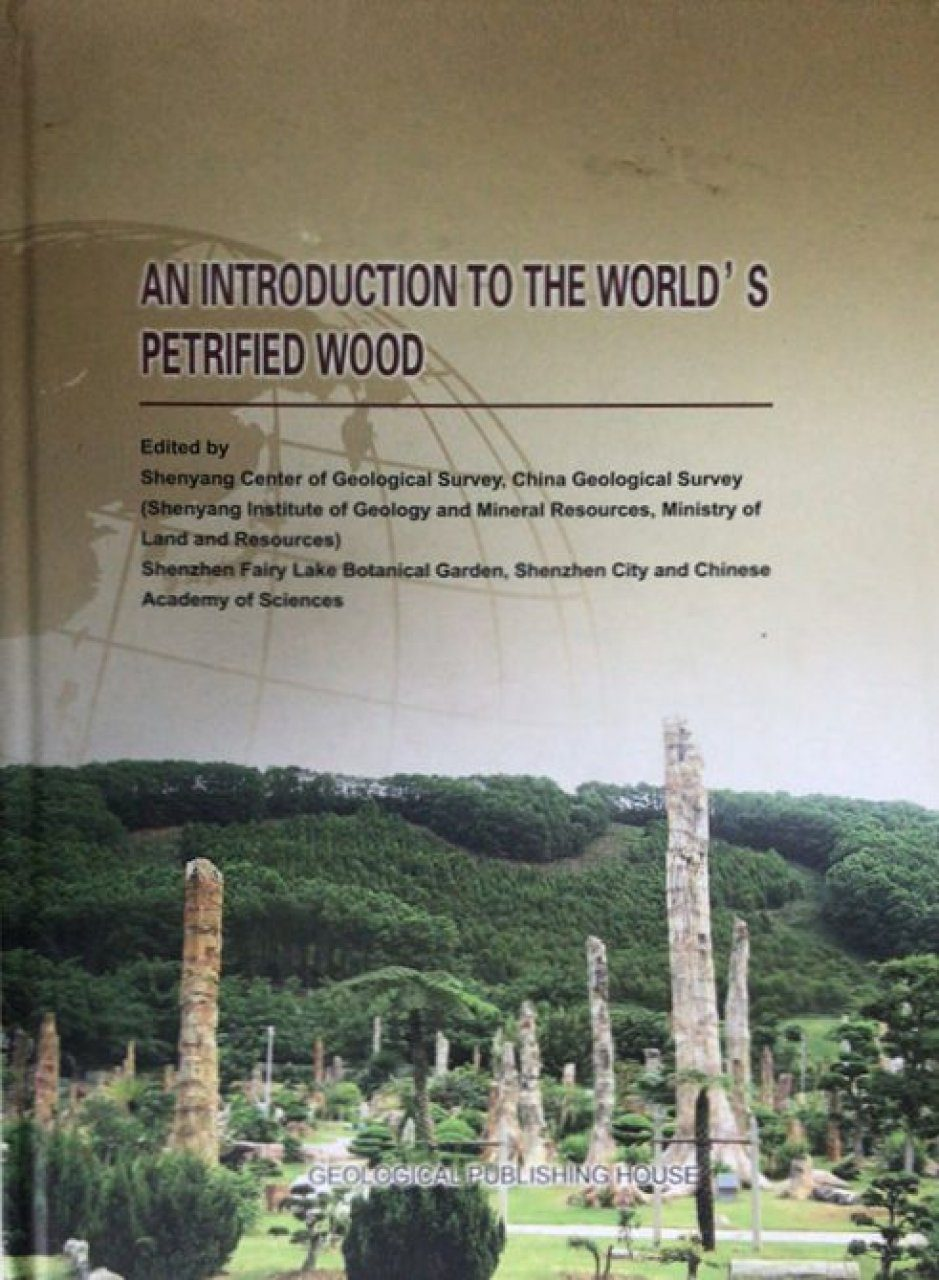 An Introduction to the World's Petrified Wood