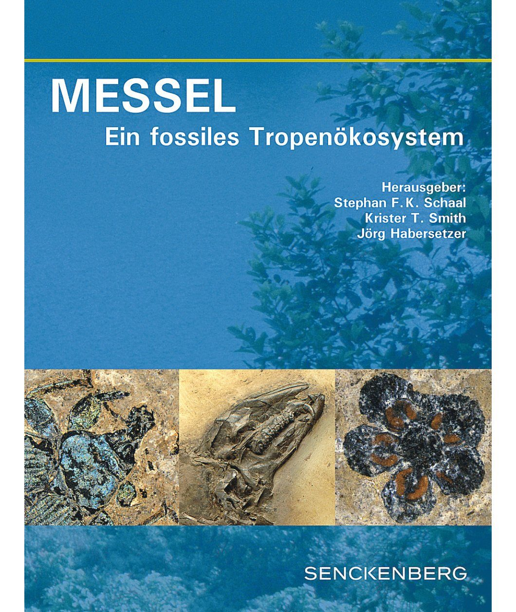 Messel: Ein Fossiles Tropenökosystem [Messel: An Ancient Greenhouse Ecosystem]