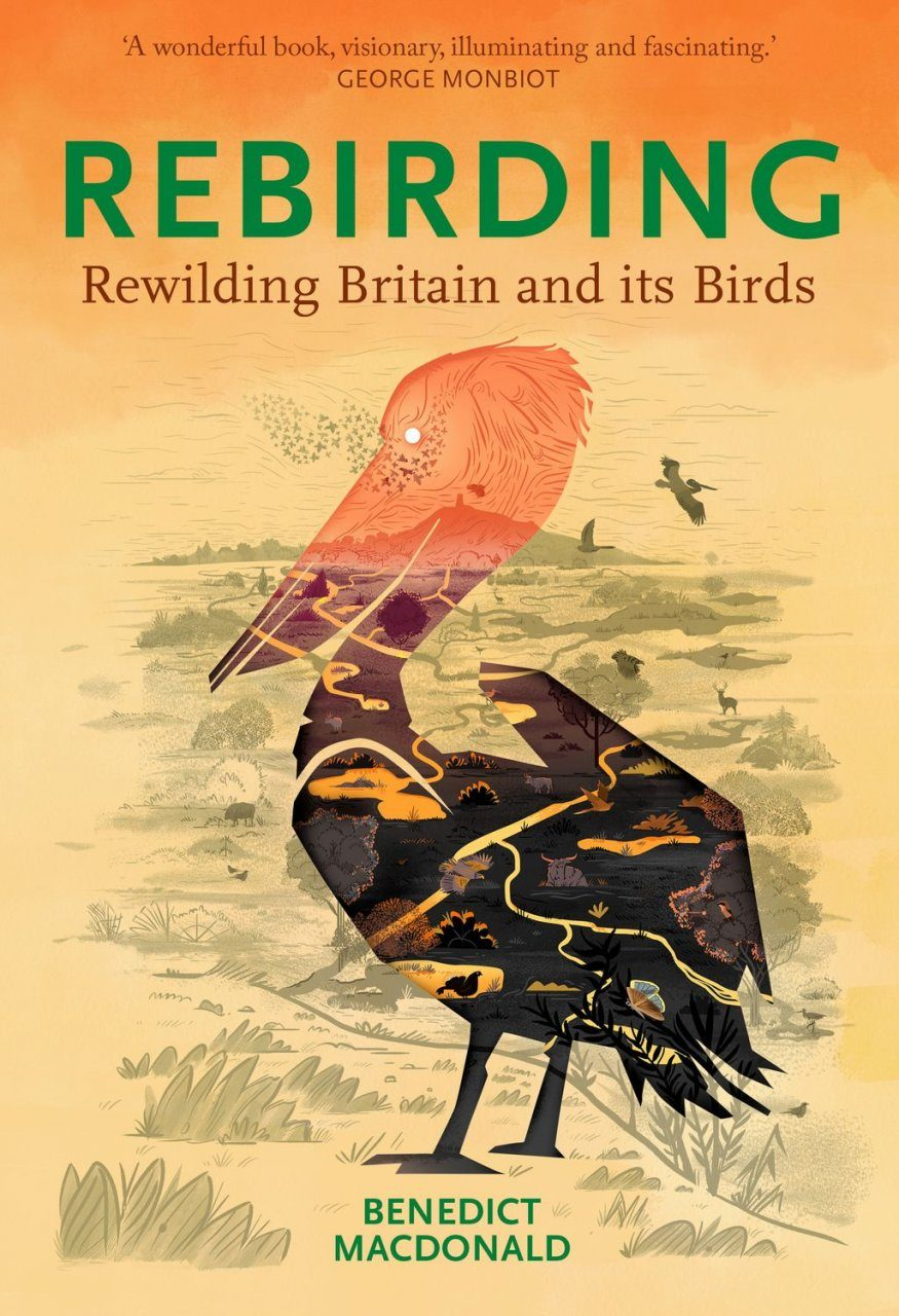 Rebirding: Restoring Britain's Wildlife | NHBS Good Reads