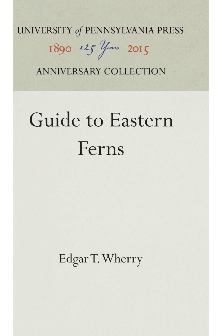 Guide to Eastern Ferns