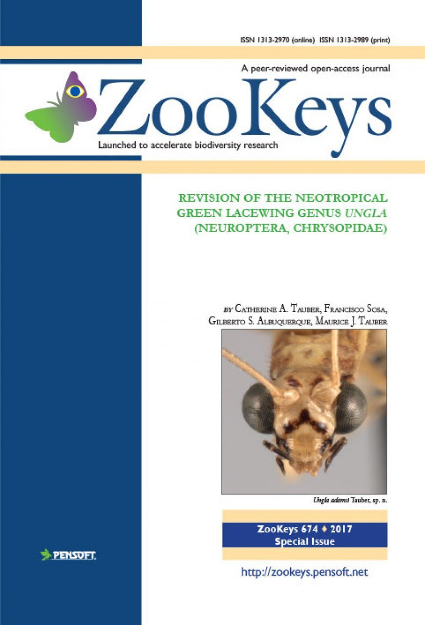 ZooKeys 674: Revision of the Neotropical Green Lacewing Genus Ungla (Neuroptera, Chrysopidae)