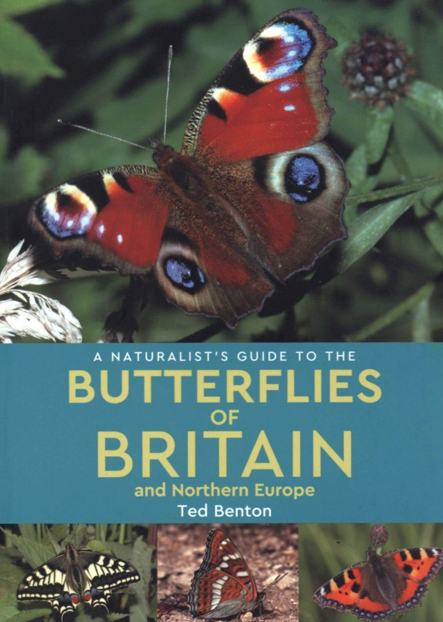 A Naturalist's Guide to the Butterflies of Britain & Northern Europe