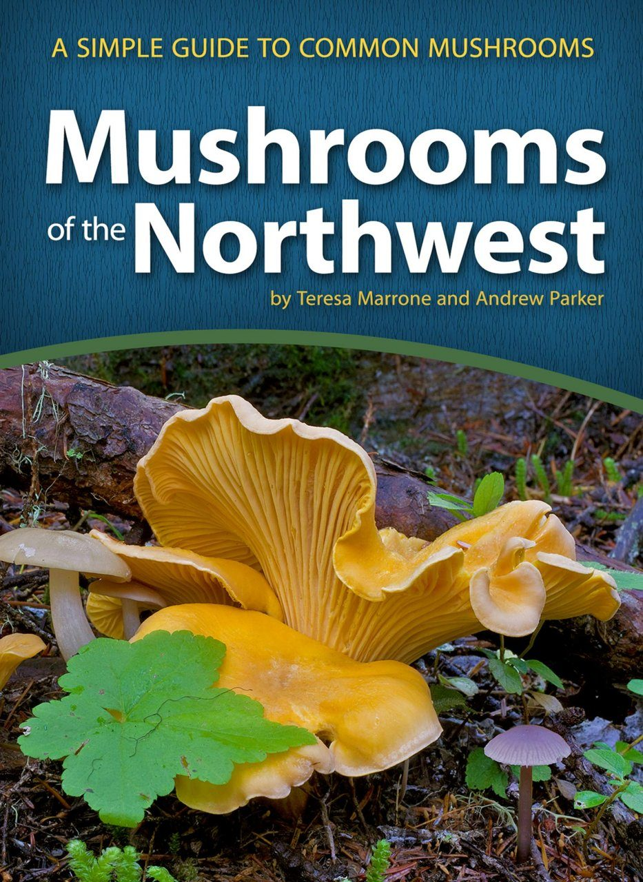 mushrooms of the northwest  a simple guide to common mushrooms