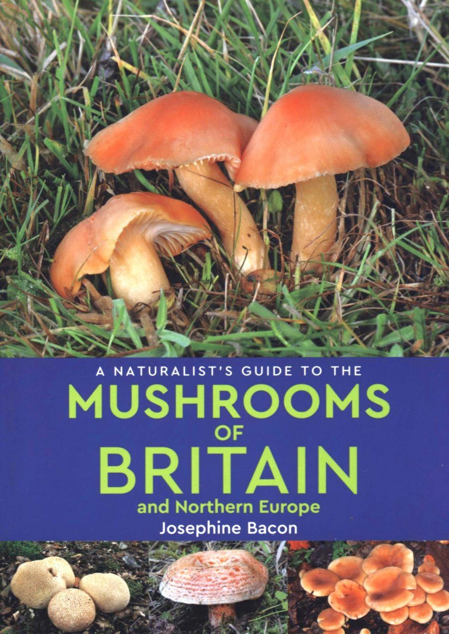 A Naturalist's Guide to the Mushrooms of Britain and Northern Europe